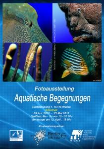 Plakat Wildau_klein